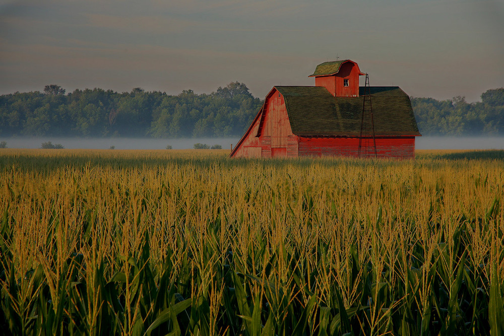 farm and crop insurance in Noblesville, Fort Wayne, Crawfordsville or Lafayette STATE | Ellinger Riggs Insurance